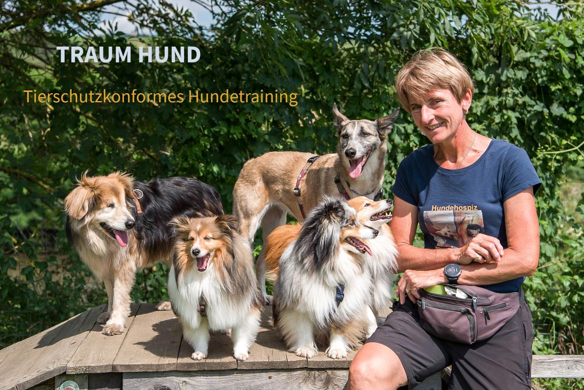 TRAUM HUND Sabine Neumann